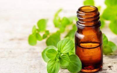 Beneficios del aceite de orégano